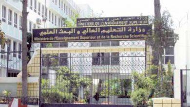 منحة وزارة التعليم العالي لدراسة الدكتوراة للطلبة الجزائريين