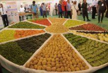 بنك الفلاحة والتنمية الريفية الجزائري قرض الرفيق